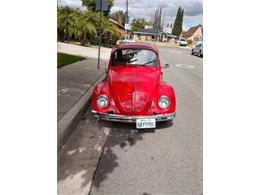 1969 Volkswagen Beetle (CC-1335501) for sale in Cadillac, Michigan