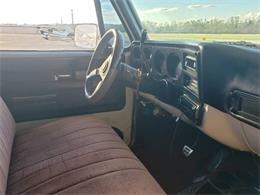 1973 Chevrolet Custom (CC-1335822) for sale in Cadillac, Michigan