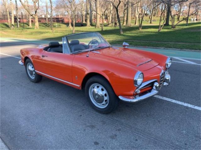1965 Alfa Romeo Giulietta Spider (CC-1335984) for sale in Astoria, New York