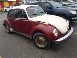 1974 Volkswagen Super Beetle (CC-1336061) for sale in Cadillac, Michigan