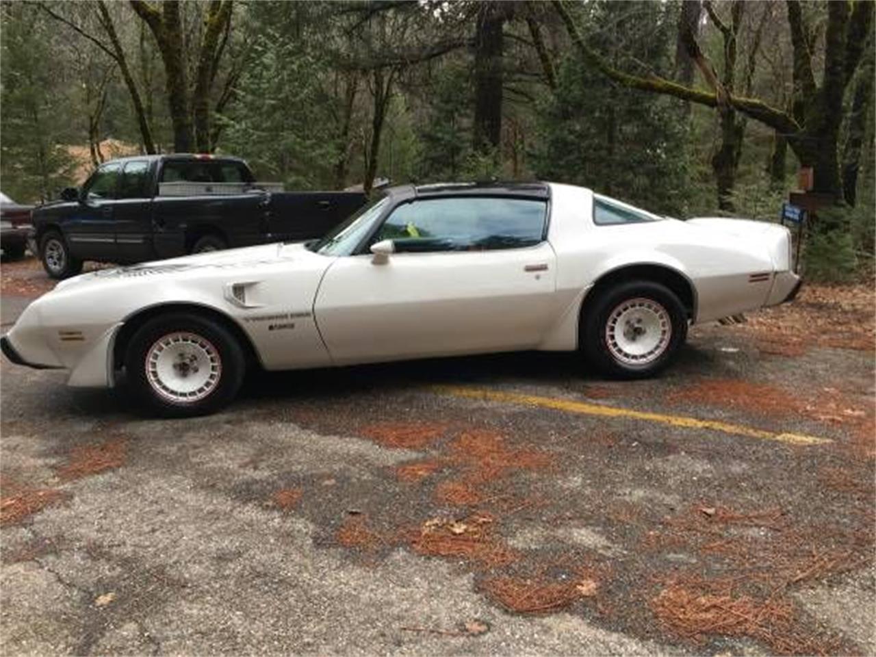1981 Pontiac Firebird (CC-1336075) for sale in Cadillac, Michigan