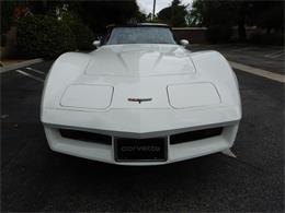 1981 Chevrolet Corvette (CC-1336174) for sale in woodland hills, California