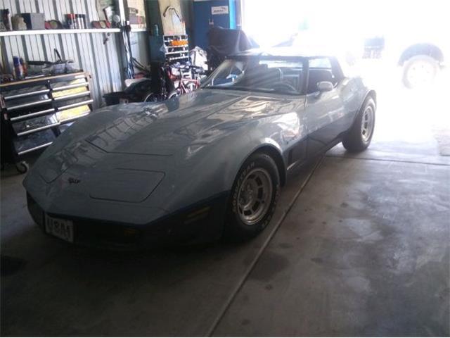 1982 Chevrolet Corvette (CC-1336278) for sale in Cadillac, Michigan