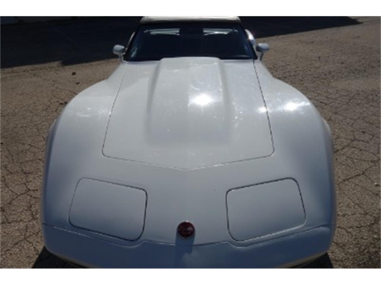 1975 Chevrolet Corvette (CC-1336801) for sale in Mundelein, Illinois
