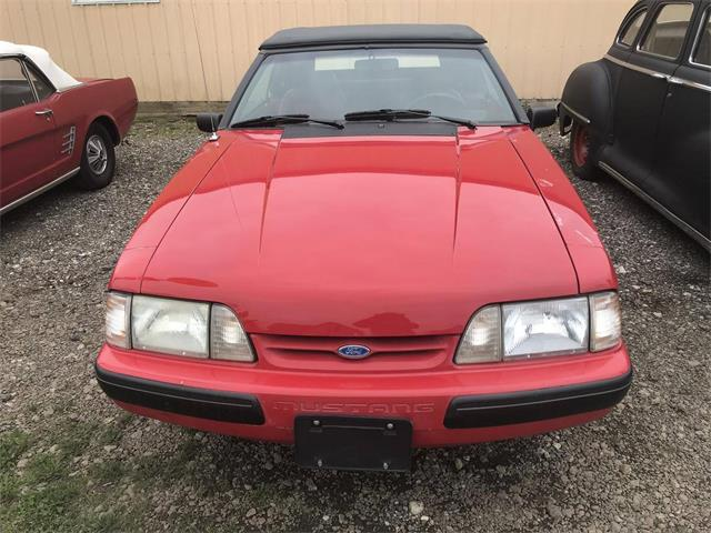 1991 Ford Mustang (CC-1337316) for sale in Utica, Ohio
