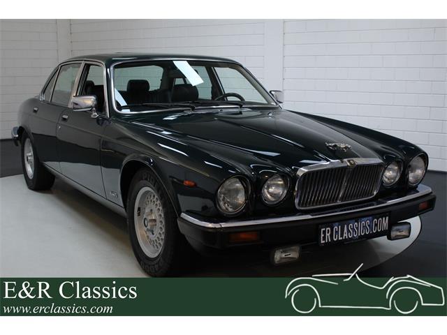 1991 Jaguar XJ12 (CC-1337579) for sale in Waalwijk, Noord-Brabant