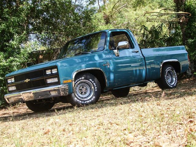 1981 Chevrolet Silverado (CC-1337840) for sale in Palmetto, Florida