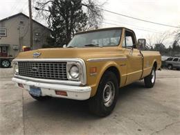 1972 Chevrolet C20 (CC-1338526) for sale in Cadillac, Michigan