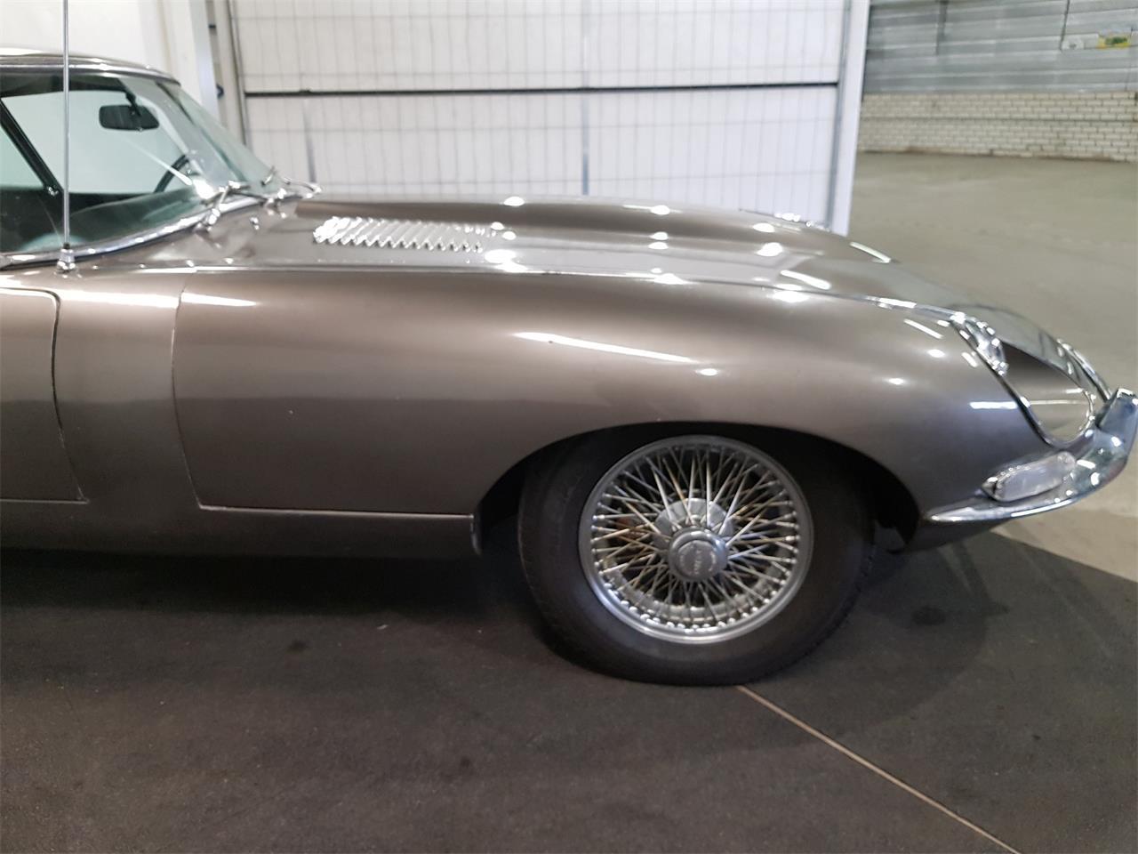1968 Jaguar E-Type (CC-1330934) for sale in Waalwijk, Noord-Brabant