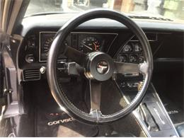 1981 Chevrolet Corvette (CC-1339610) for sale in Cadillac, Michigan