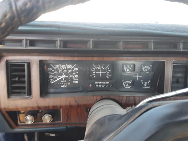 1982 Ford F150 (CC-1340105) for sale in Tucson, Arizona