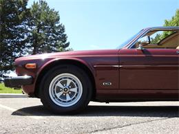 1986 Jaguar XJ6 (CC-1341084) for sale in O'Fallon, Illinois