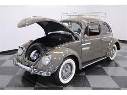 1964 Volkswagen Beetle (CC-1340149) for sale in Lutz, Florida
