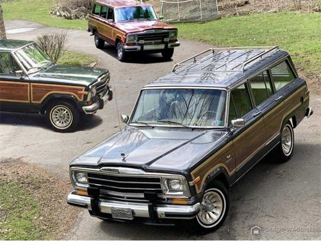 1986 Jeep Grand Wagoneer (CC-1341641) for sale in Bemus Point, New York