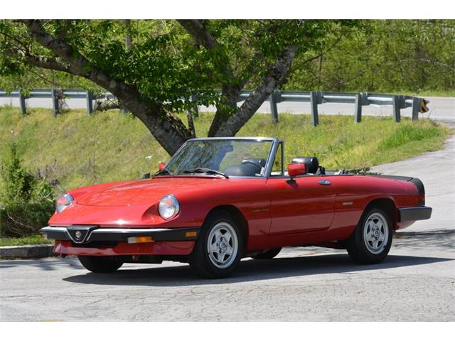 1986 Alfa Romeo Spider Veloce (CC-1340229) for sale in Cookeville, Tennessee