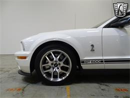 2008 Shelby GT500 (CC-1342579) for sale in O'Fallon, Illinois