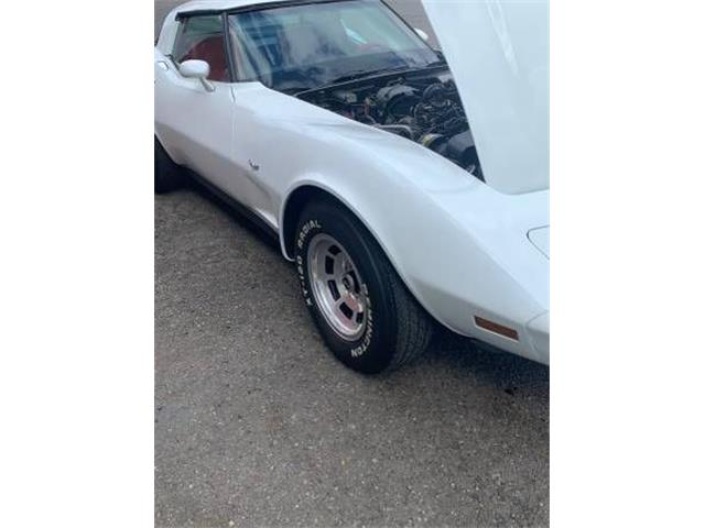 1979 Chevrolet Corvette (CC-1342987) for sale in Cadillac, Michigan