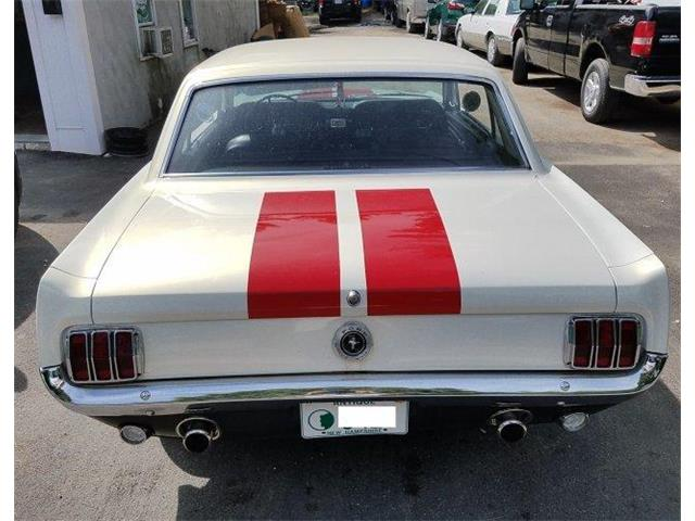 1964 Ford Mustang (CC-1343395) for sale in Lake Hiawatha, New Jersey