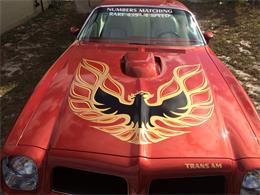 1976 Pontiac Firebird Trans Am (CC-1343641) for sale in Duanesburg , New York