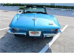 1966 Chevrolet Corvette (CC-1343730) for sale in Sarasota, Florida