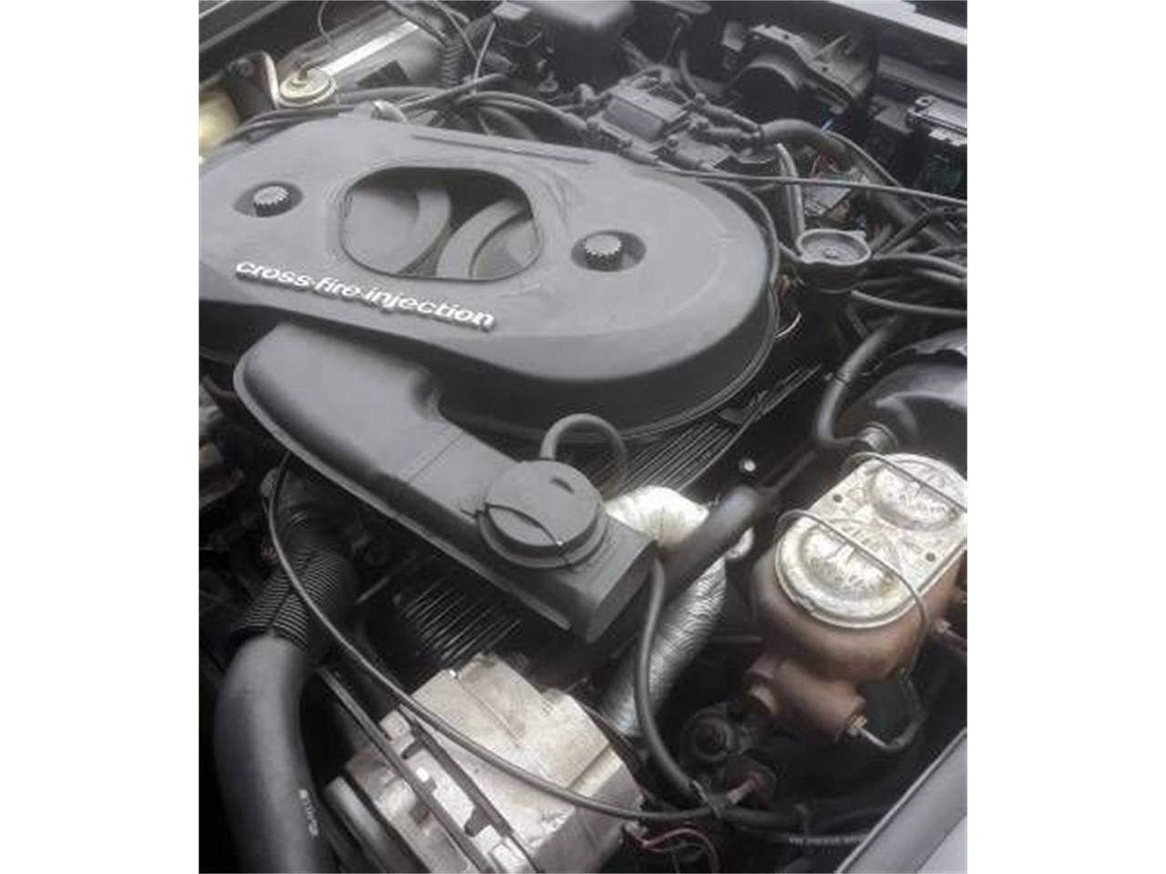 1982 Chevrolet Corvette (CC-1340374) for sale in Cadillac, Michigan