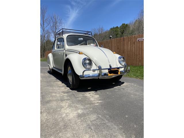 1965 Volkswagen Beetle (CC-1344340) for sale in Richfield Springs, New York