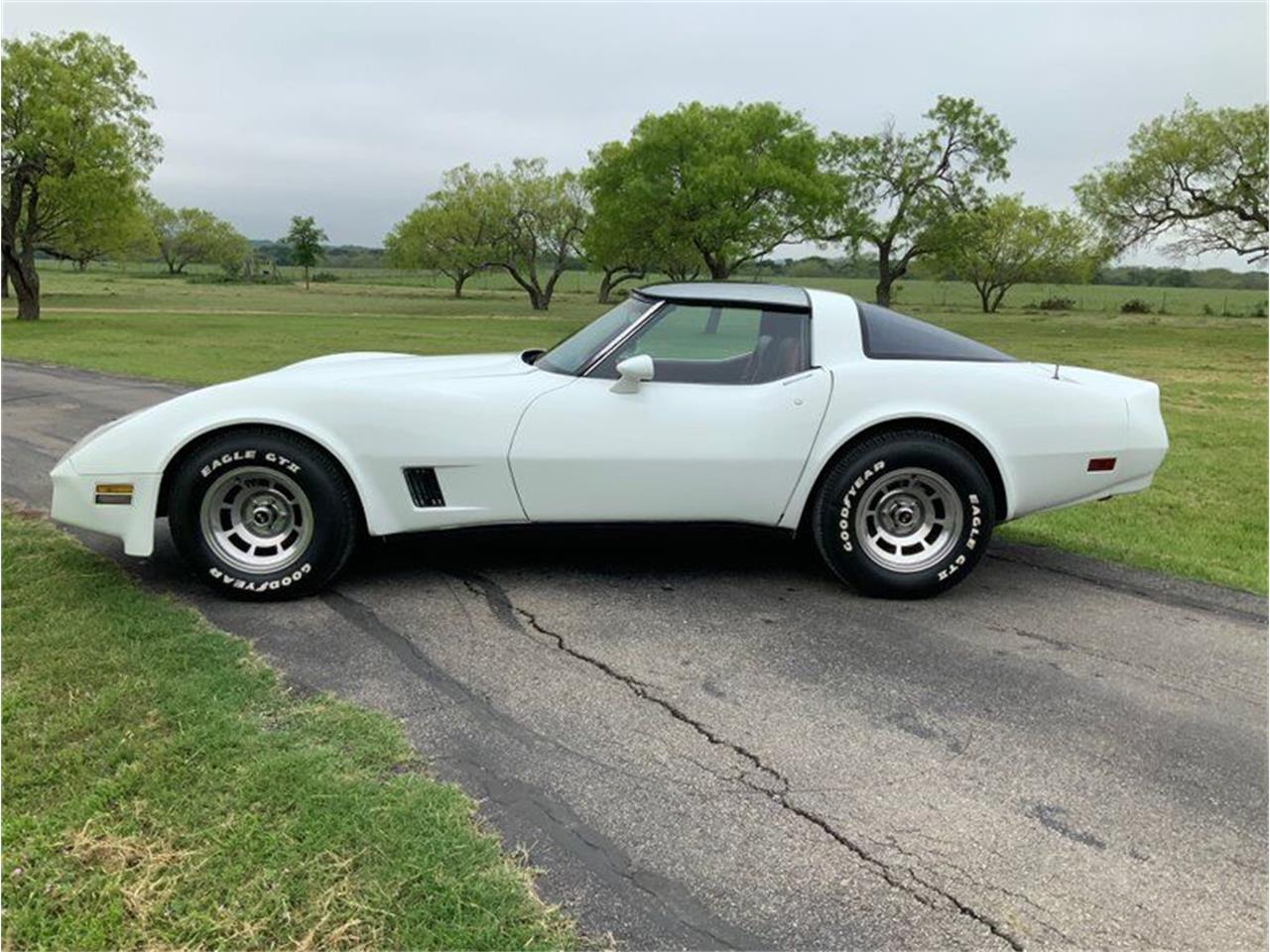 1981 Chevrolet Corvette (CC-1344381) for sale in Fredericksburg, Texas