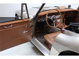 1966 Austin-Healey 3000 Mark III (CC-1344580) for sale in Waalwijk, Noord Brabant
