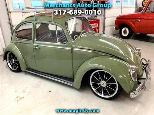 1965 Volkswagen Beetle (CC-1345220) for sale in Cicero, Indiana