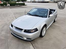 2001 Ford Mustang (CC-1345340) for sale in O'Fallon, Illinois
