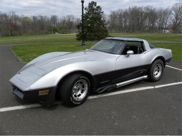 1981 Chevrolet Corvette (CC-1345560) for sale in Cadillac, Michigan