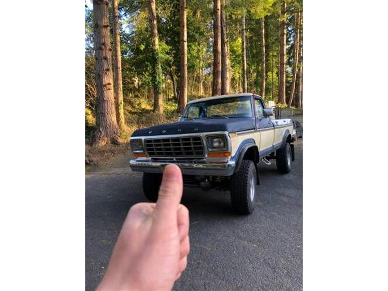 1979 Ford F150 (CC-1345576) for sale in Cadillac, Michigan