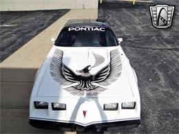1981 Pontiac Firebird (CC-1340819) for sale in O'Fallon, Illinois
