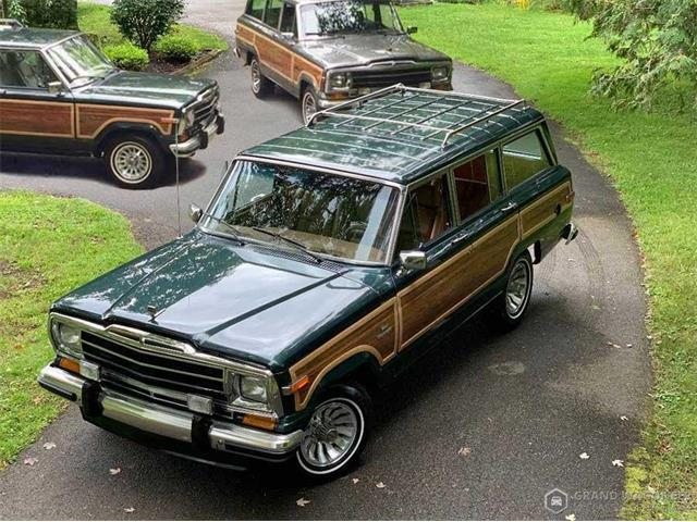 1991 Jeep Grand Wagoneer (CC-1351944) for sale in Bemus Point, New York