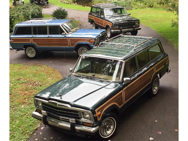 1991 Jeep Grand Wagoneer (CC-1351946) for sale in Bemus Point, New York