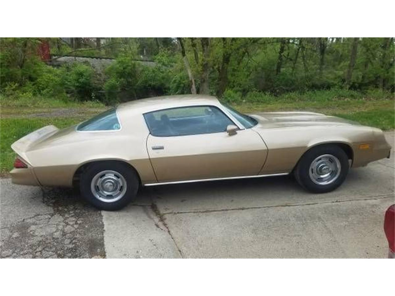 1981 Chevrolet Camaro (CC-1352237) for sale in Cadillac, Michigan