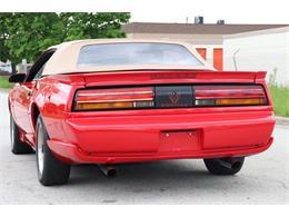 1992 Pontiac Firebird (CC-1352641) for sale in Alsip, Illinois