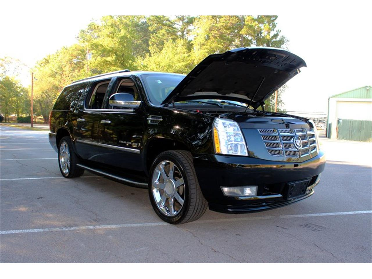 2009 Cadillac Escalade (CC-1352949) for sale in Lenoir City, Tennessee