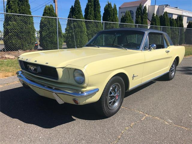 1966 Ford Mustang (CC-1353265) for sale in Milford City, Connecticut