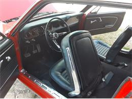 1966 Ford Mustang (CC-1353417) for sale in Cadillac, Michigan