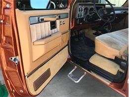 1983 Chevrolet C/K 10 (CC-1353786) for sale in Fredericksburg, Texas