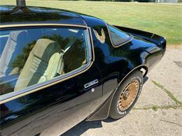 1981 Pontiac Firebird (CC-1354244) for sale in Shelby Township, Michigan