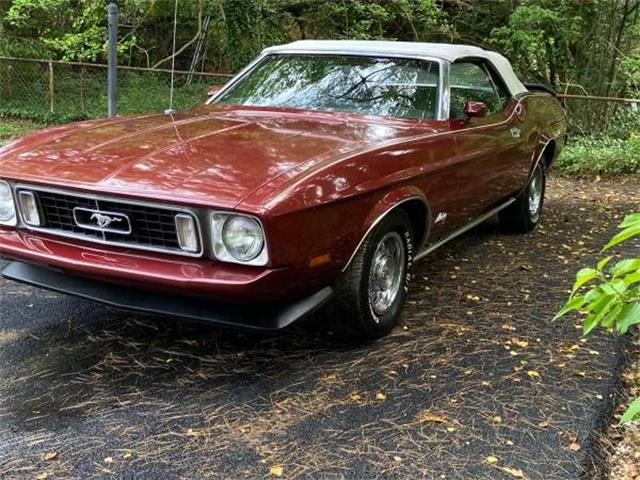 1973 Ford Mustang (CC-1354759) for sale in Cadillac, Michigan