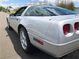 1996 Chevrolet Corvette (CC-1354808) for sale in Milford City, Connecticut