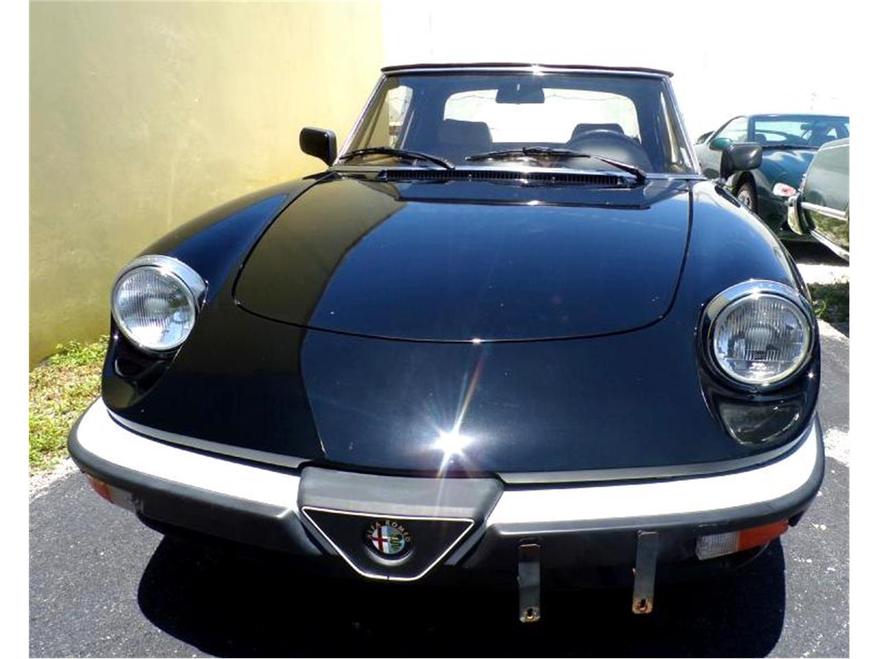 1990 Alfa Romeo Spider (CC-1355173) for sale in Boca Raton, Florida