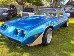 1979 Pontiac Firebird Trans Am (CC-1355314) for sale in Cadillac, Michigan
