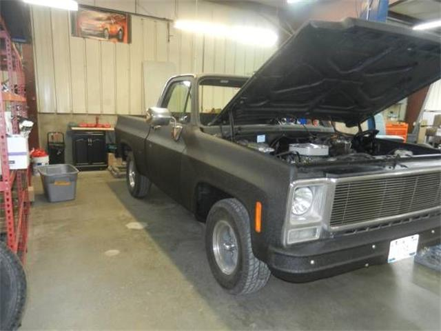 1980 Chevrolet C10 (CC-1355323) for sale in Cadillac, Michigan