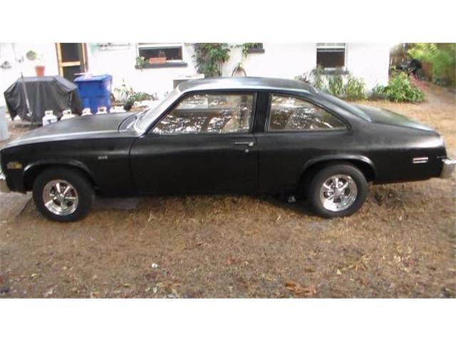 1979 Chevrolet Nova (CC-1355612) for sale in Cadillac, Michigan