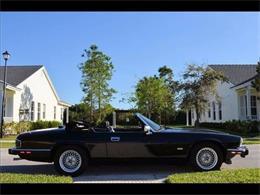 1991 Jaguar XJS (CC-1355654) for sale in Cadillac, Michigan