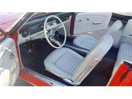1964 Ford Mustang (CC-1350669) for sale in Tampa, Florida